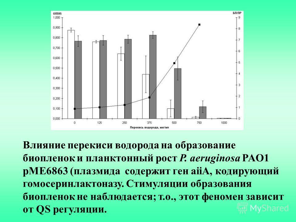 Влияние перекиси водорода на образование биопленок и планктонный рост P. aeruginosa PAO1 pME6863 (плазмида содержит ген aiiA, кодирующий гомосеринлактоназу. Стимуляции образования биопленок не наблюдается; т.о., этот феномен зависит от QS регуляции.