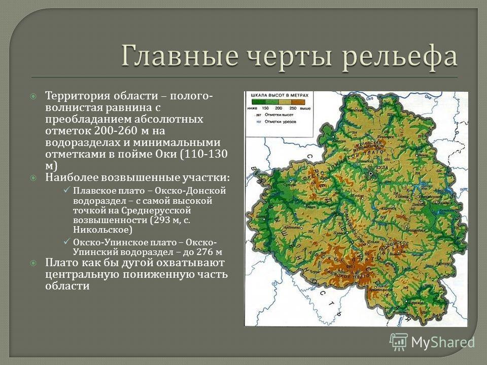 Территория области – полого - волнистая равнина с преобладанием абсолютных отметок 200-260 м на водоразделах и минимальными отметками в пойме Оки (110-130 м ) Наиболее возвышенные участки : Плавское плато – Окско - Донской водораздел – с самой высоко