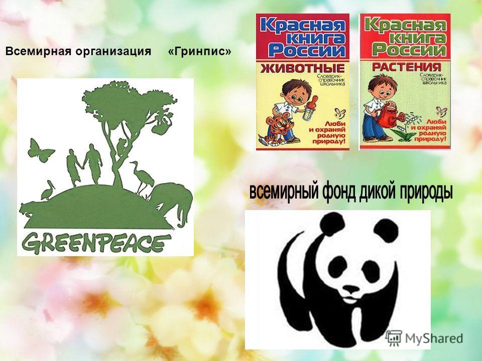 Всемирная организация «Гринпис»