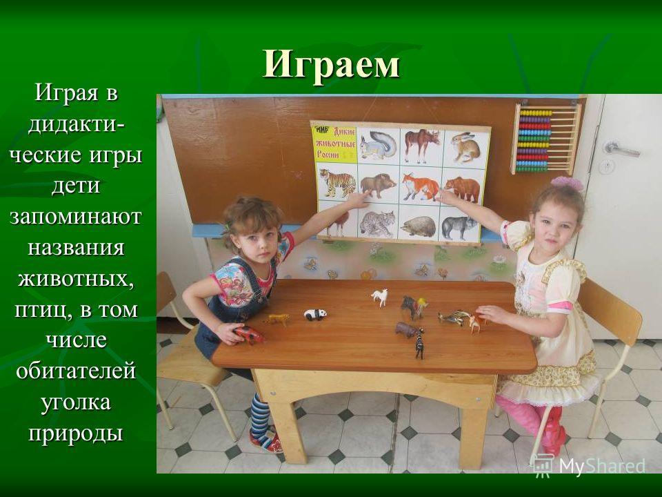 Играем Играя в дидактические игры дети запоминают названия животных, птиц, в том числе обитателей уголка природы