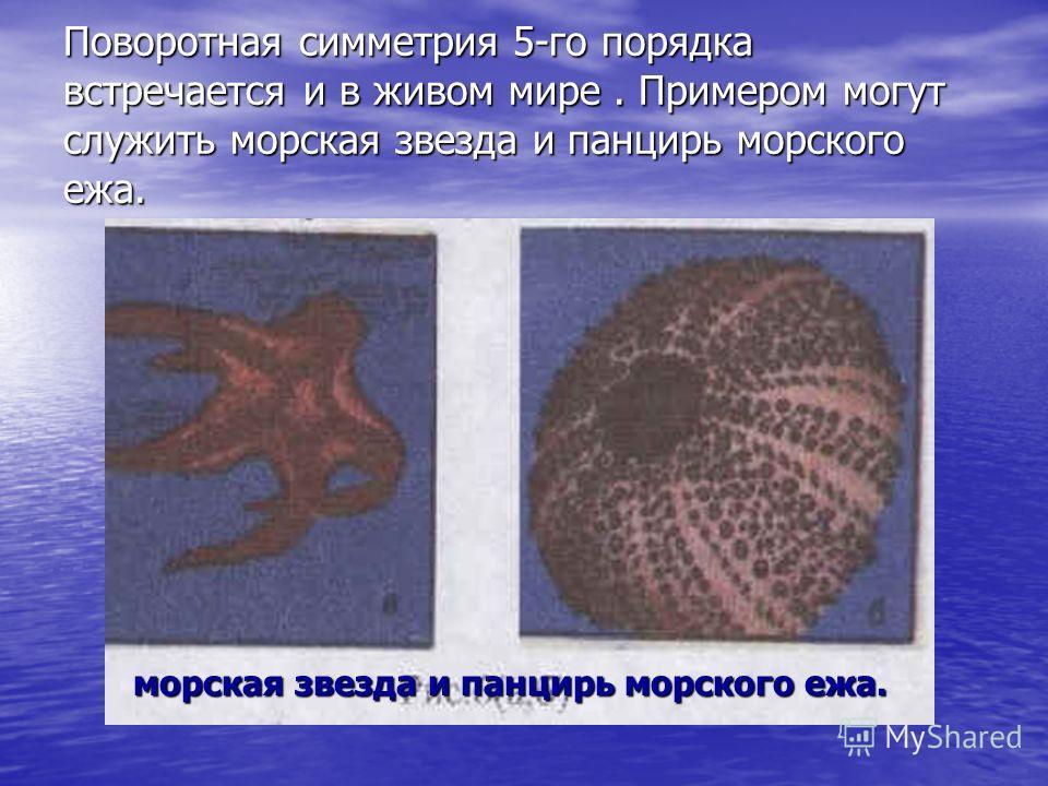 Поворотная симметрия 5-го порядка встречается и в живом мире. Примером могут служить морская звезда и панцирь морского ежа. морская звезда и панцирь морского ежа.