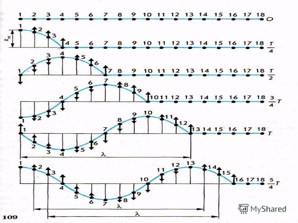 Распространение механических волн