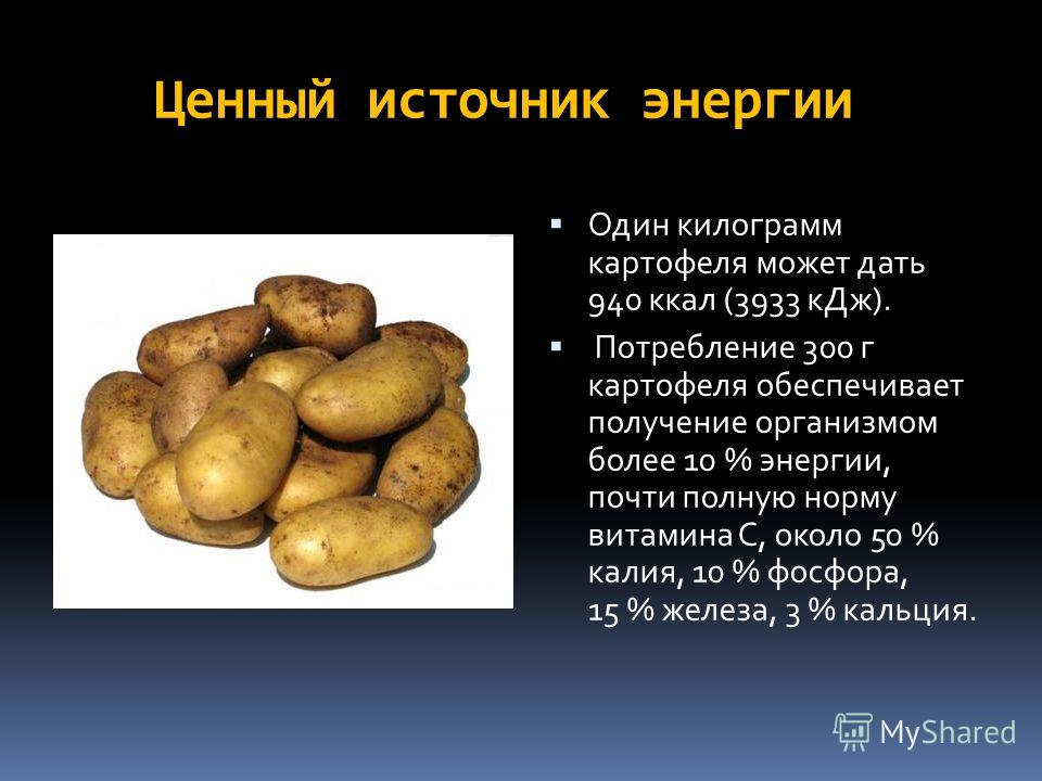 Ценный источник энергии Один килограмм картофеля может дать 940 ккал (3933 к Дж). Потребление 300 г картофеля обеспечивает получение организмом полее 10 % энергии, почти полную норму витамина С, около 50 % калия, 10 % фосфора, 15 % железа, 3 % кальци