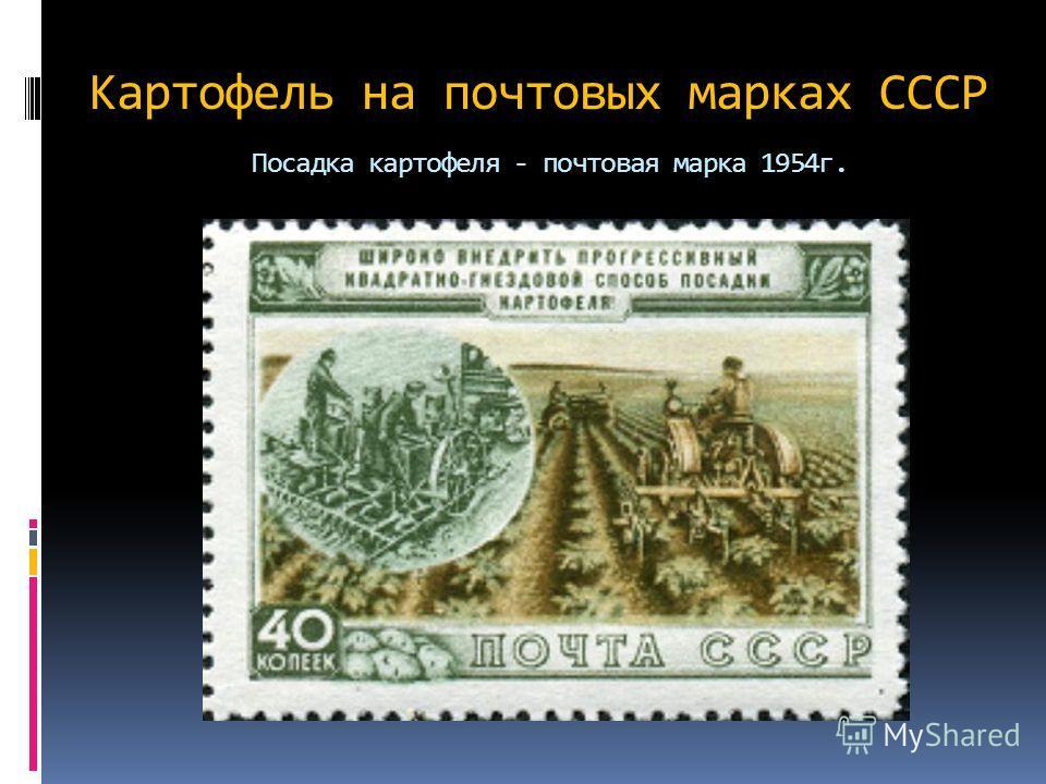 Картофель на почтовых марках СССР Посадка картофеля - почтовая марка 1954 г.