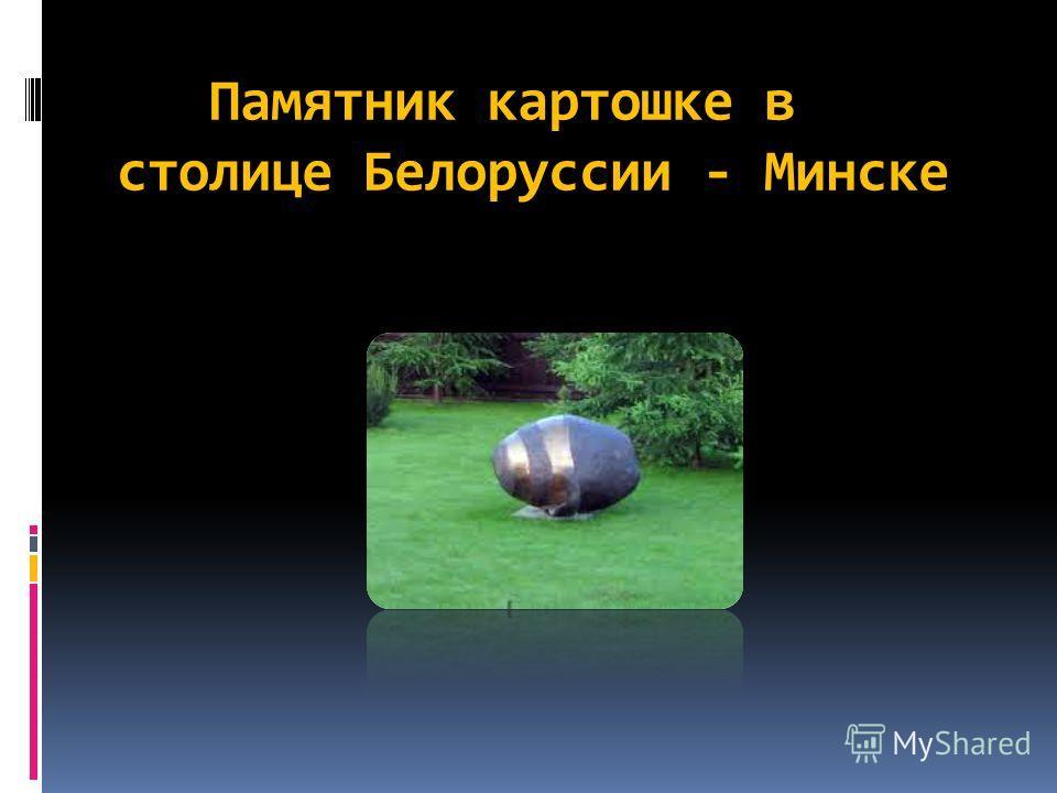 Памятник картошке в столице Белоруссии - Минске