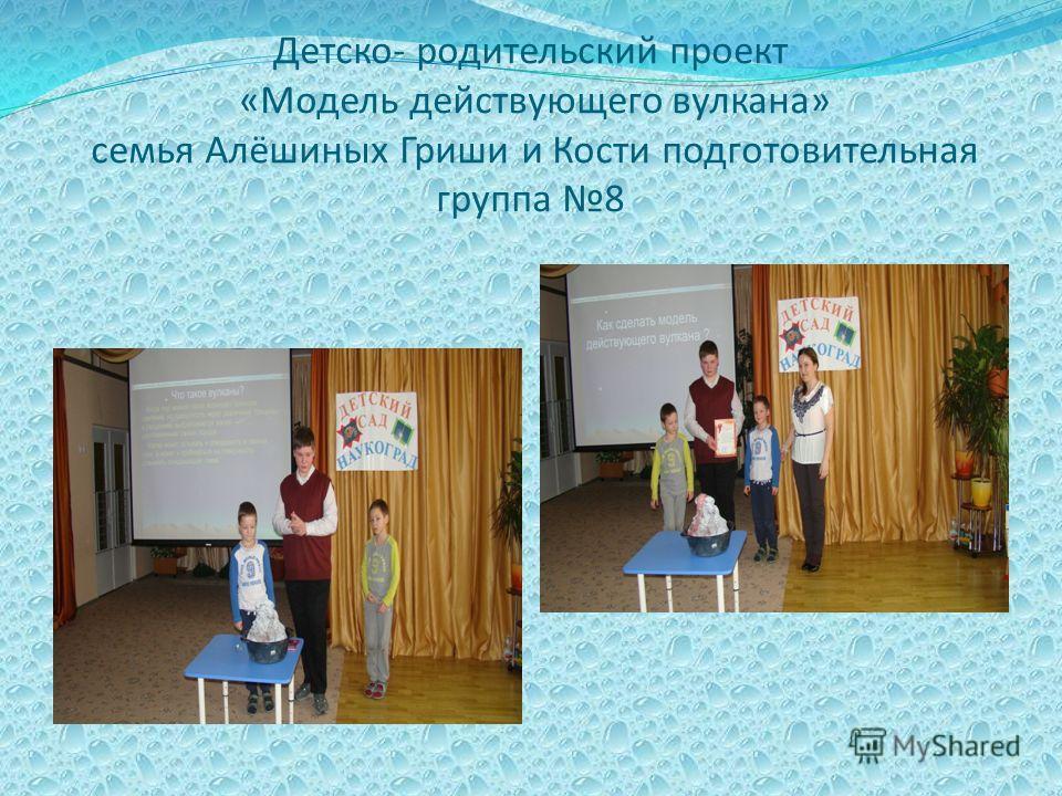 Детско- родительский проект «Модель действующего вулкана» семья Алёшиных Гриши и Кости подготовительная группа 8