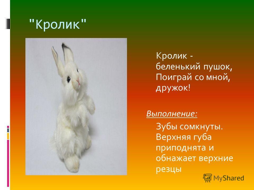 Кролик Кролик - беленький пушок, Поиграй со мной, дружок! Выполнение: Зубы сомкнуты. Верхняя губа приподнята и обнажает верхние резцы