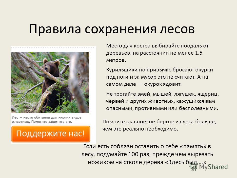 Правила сохранения лесов Если есть соблазн оставить о себе «память» в лесу, подумайте 100 раз, прежде чем вырезать ножиком на стволе дерева «Здесь был …» Помните главное: не берите из леса больше, чем это реально необходимо. Не трогайте змей, мышей,