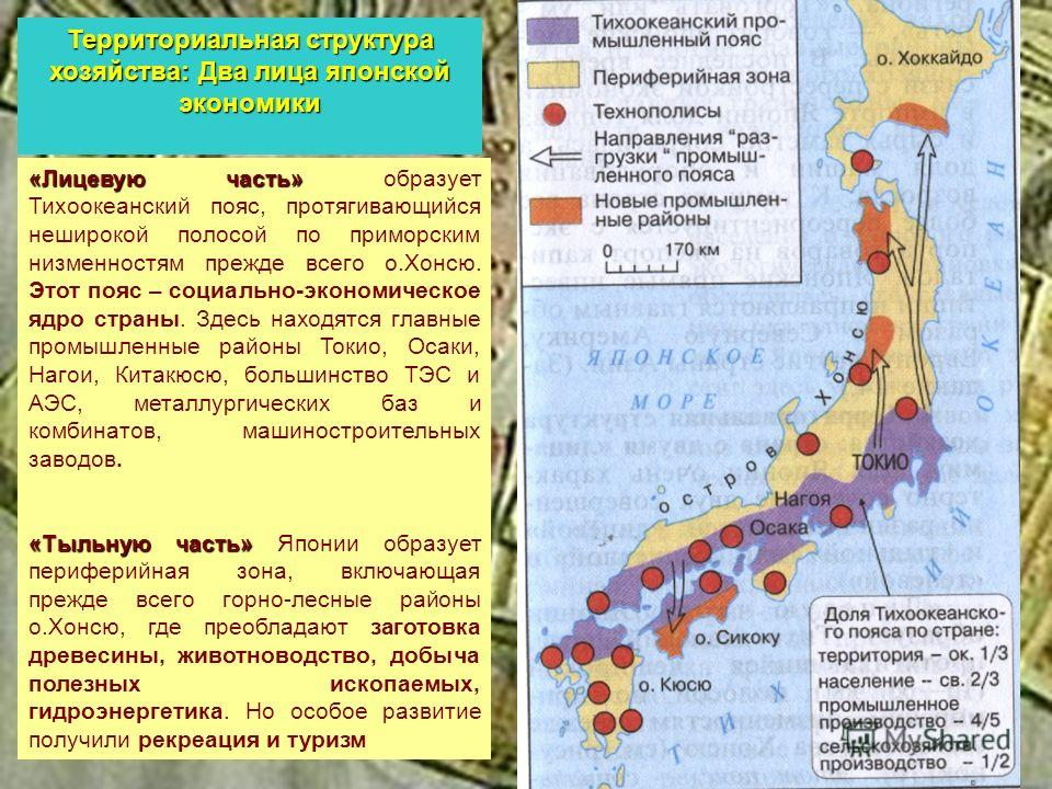 «Лицевую часть» «Лицевую часть» образует Тихоокеанский пояс, протягивающийся неширокой полосой по приморским низменностям прежде всего о.Хонсю. Этот пояс – социально-экономическое ядро страны. Здесь находятся главные промышленные районы Токио, Осаки,