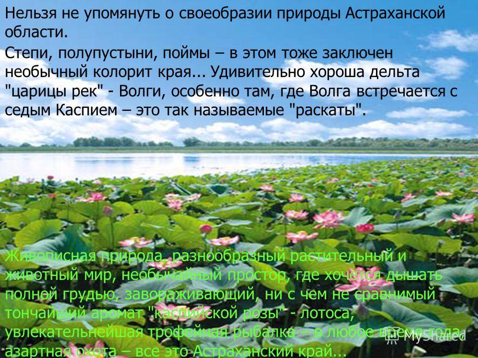 Живописная природа, разнообразный растительный и животный мир, необычайный простор, где хочется дышать полной грудью, завораживающий, ни с чем не сравнимый тончайший аромат