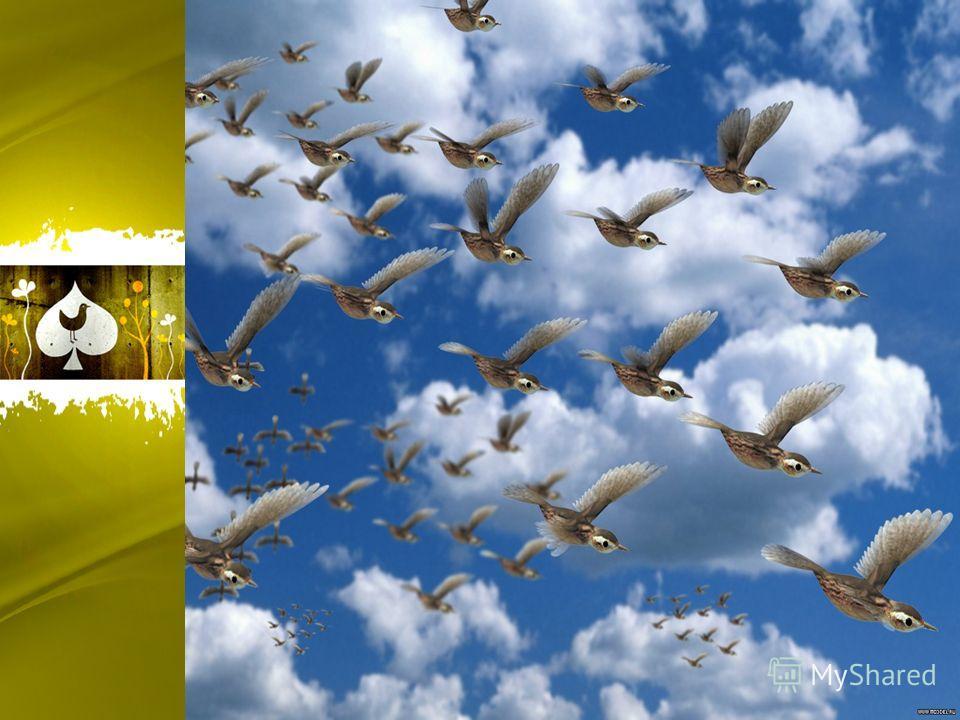 1 строфа Как автор называет детей? А птицу? О чем просят дети? О чем сожалеют «милые крошки»? Как автор объясняет отлёт птиц осенью? Что значит выражение «гонят холода»? Подберите синоним к слову «детки».