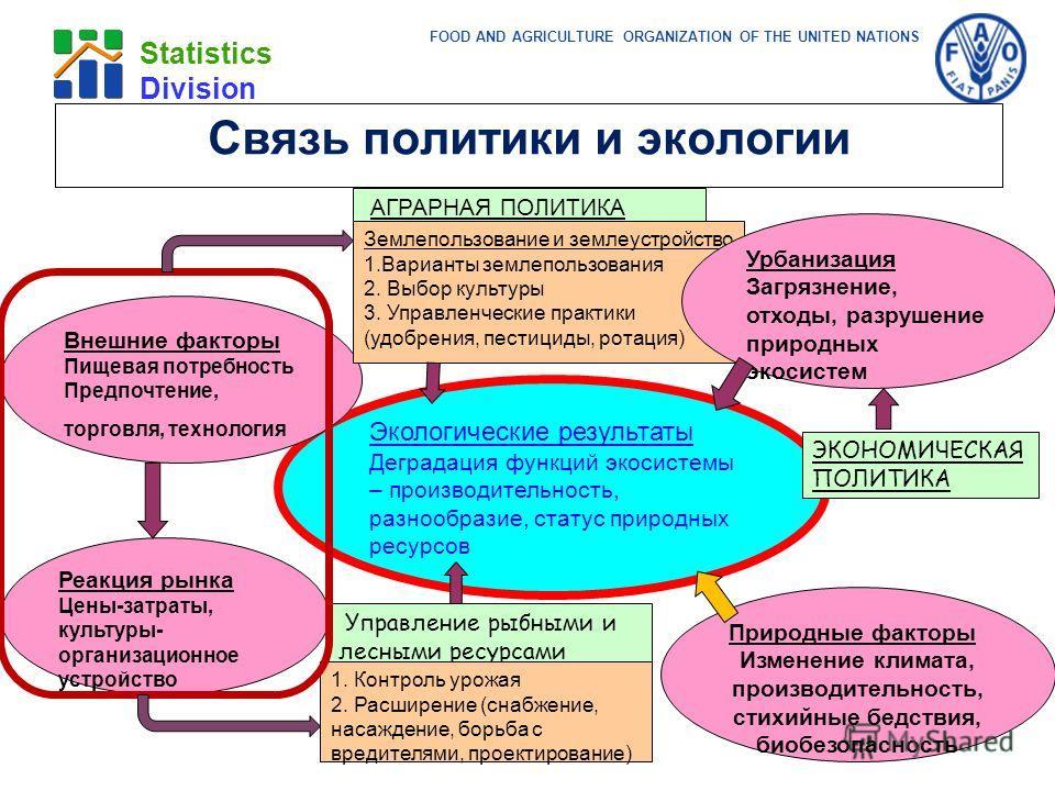 FOOD AND AGRICULTURE ORGANIZATION OF THE UNITED NATIONS Statistics Division Реакция рынка Цены-затраты, культуры- организационное устройство Экологические результаты Деградация функций экосистемы – производительность, разнообразие, статус природных р