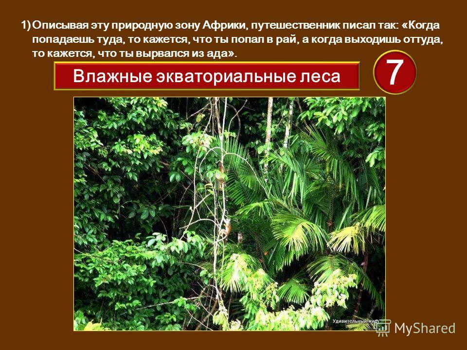 1)Описывая эту природную зону Африки, путешественник писал так: «Когда попадаешь туда, то кажется, что ты попал в рай, а когда выходишь оттуда, то кажется, что ты вырвался из ада». 7 Влажные экваториальные леса