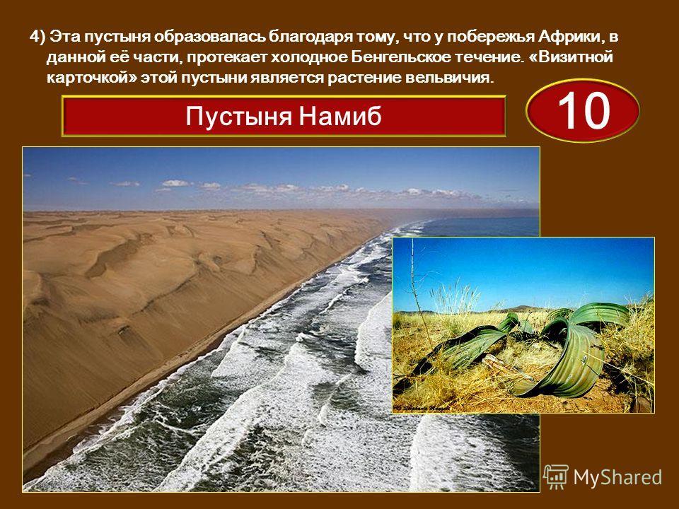 4) Эта пустыня образовалась благодаря тому, что у побережья Африки, в данной её части, протекает холодное Бенгельское течение. «Визитной карточкой» этой пустыни является растение вельвичия. 10 Пустыня Намиб