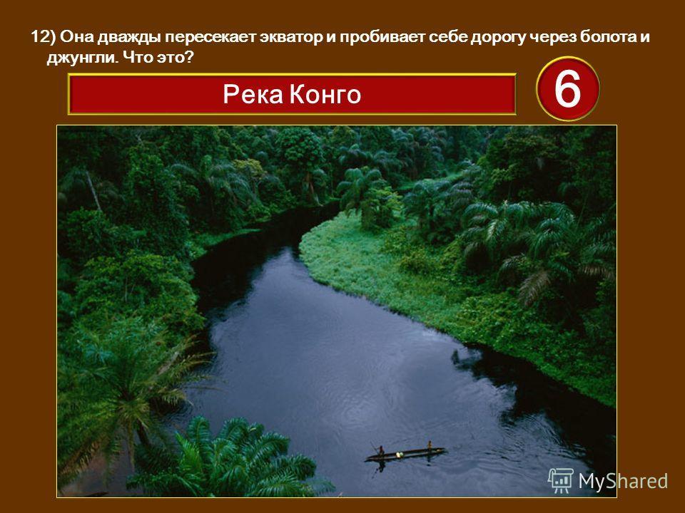 12) Она дважды пересекает экватор и пробивает себе дорогу через болота и джунгли. Что это? 6 Река Конго