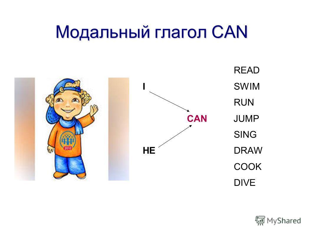 Модальный глагол CAN Модальный глагол CAN READ I SWIM RUN CAN JUMP SING HE DRAW COOK DIVE