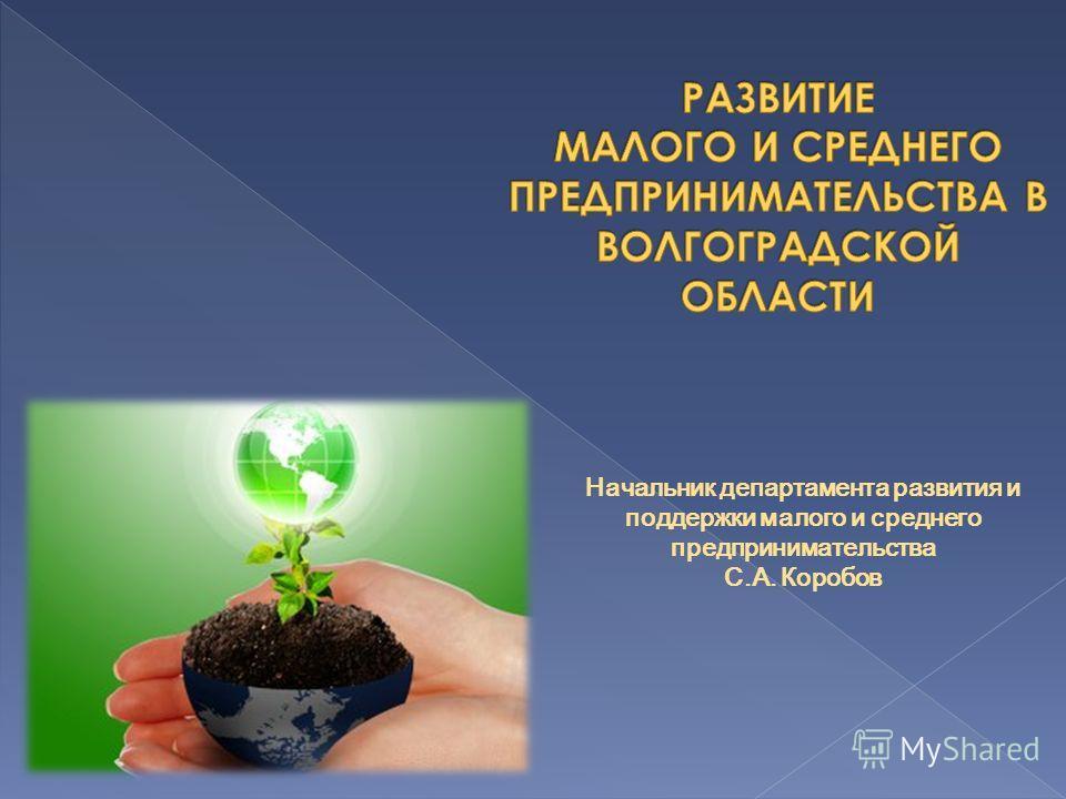 Начальник департамента развития и поддержки малого и среднего предпринимательства С.А. Коробов