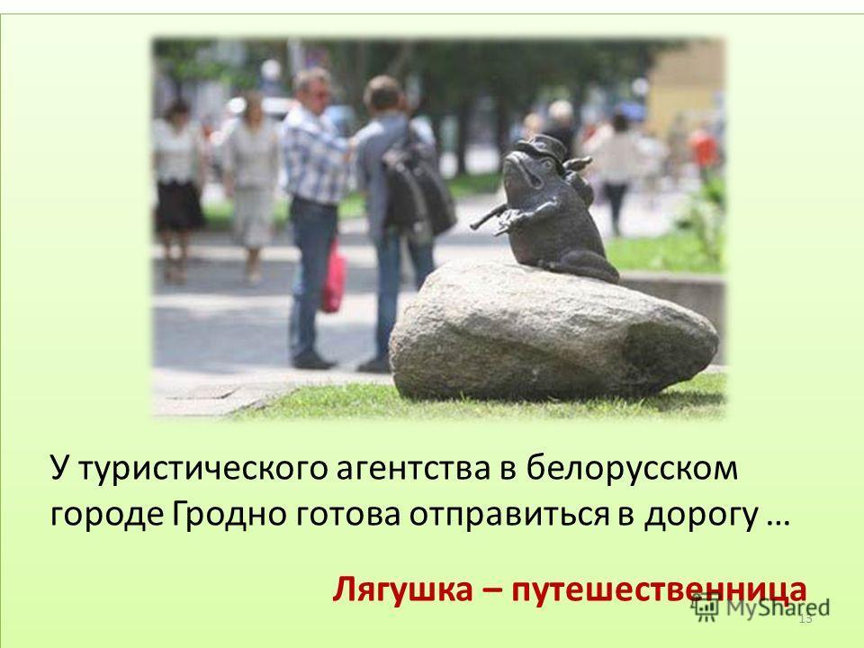 У туристического агентства в белорусском городе Гродно готова отправиться в дорогу … Лягушка – путешественница 13