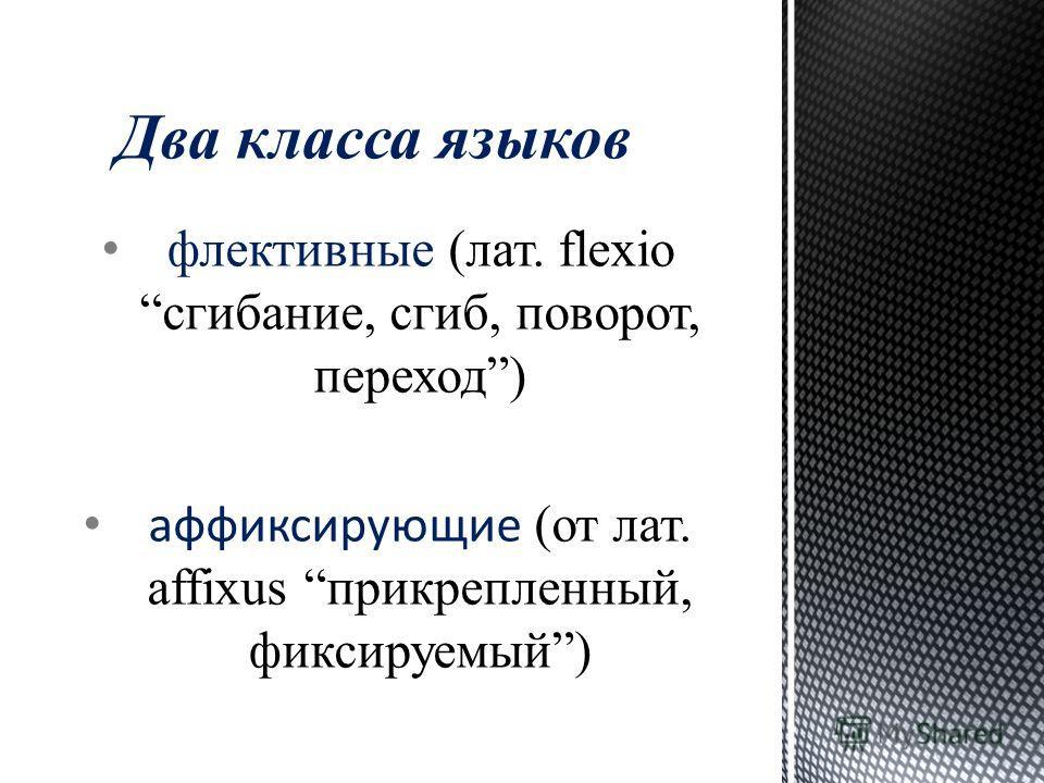 флективные (лат. flexio сгибание, сгиб, поворот, переход) аффиксирующие (от лат. affixus прикрепленный, фиксируемый) Два класса языков