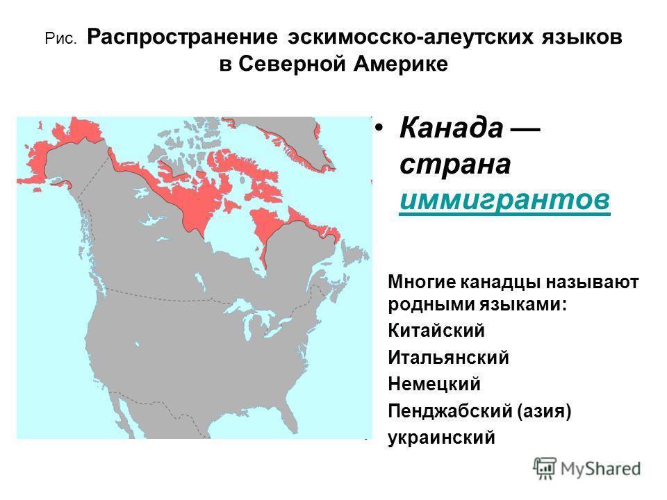 Рис. Распространение эскимосско-алеутских языков в Северной Америке Многие канадцы называют родными языками: Китайский Итальянский Немецкий Пенджабский (азия) украинский Канада страна иммигрантов иммигрантов