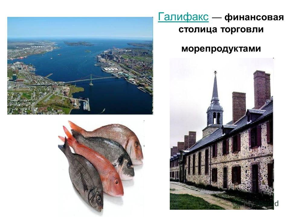 Галифакс Галифакс финансовая столица торговли морепродуктами