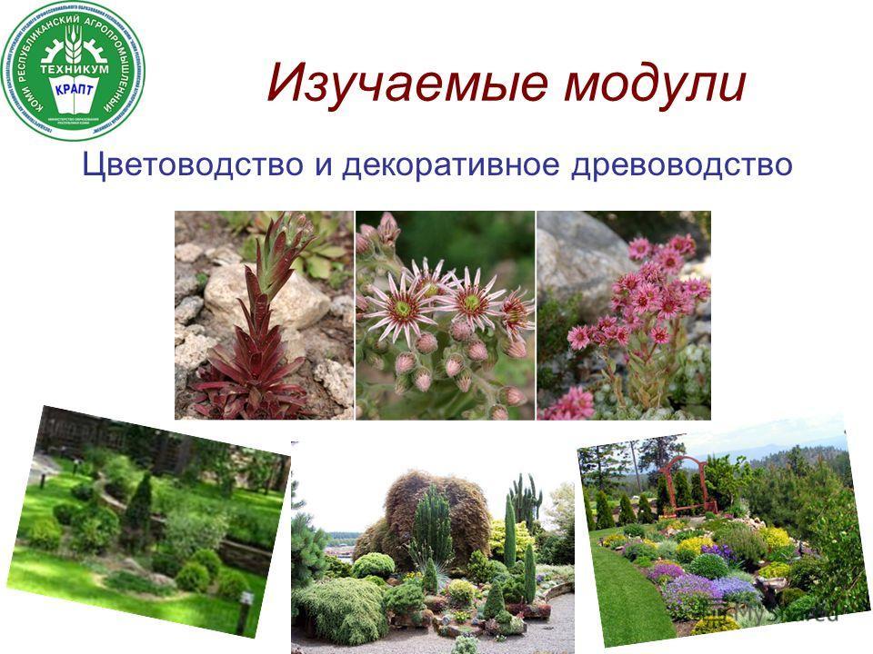 Изучаемые модули Цветоводство и декоративное древоводство