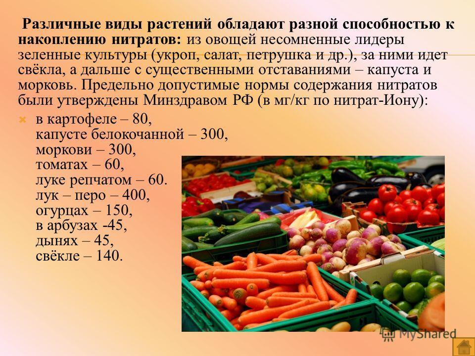 Различные виды растений обладают разной способностью к накоплению нитратов: из овощей несомненные лидеры зеленные культуры (укроп, салат, петрушка и др.), за ними идет свёкла, а дальше с существенными отставаниями – капуста и морковь. Предельно допус