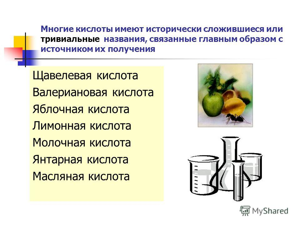 Многие кислоты имеют исторически сложившиеся или тривиальные названия, связанные главным образом с источником их получения Щавелевая кислота Валериановая кислота Яблочная кислота Лимонная кислота Молочная кислота Янтарная кислота Масляная кислота