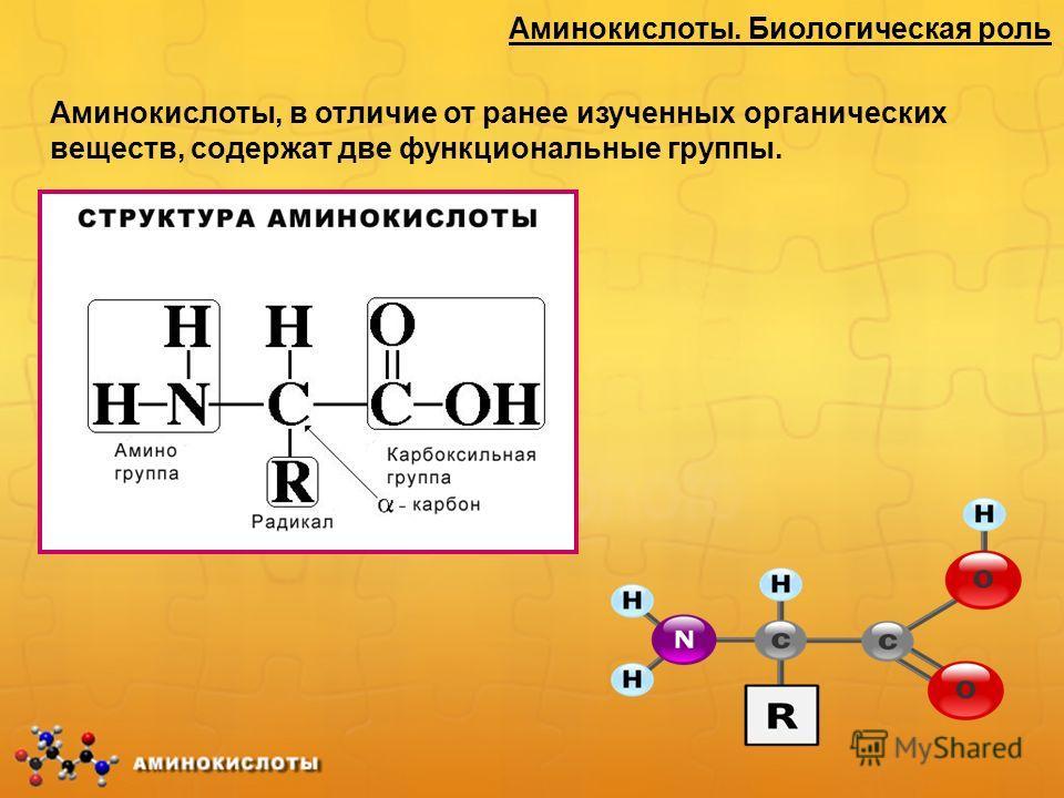 Аминокислоты. Биологическая роль Аминокислоты, в отличие от ранее изученных органических веществ, содержат две функциональные группы.