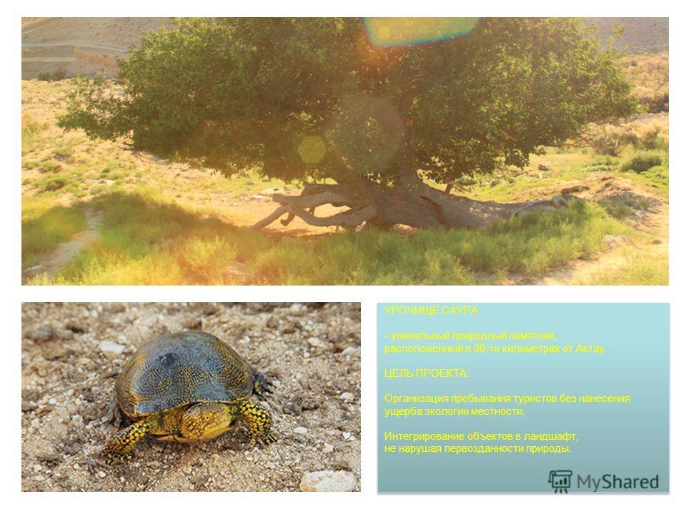 УРОЧИЩЕ САУРА - уникальный природный памятник, расположенный в 80-ти километрах от Актау. ЦЕЛЬ ПРОЕКТА: Организация пребывания туристов без нанесения ущерба экологии местности. Интегрирование объектов в ландшафт, не нарушая первозданности природы.