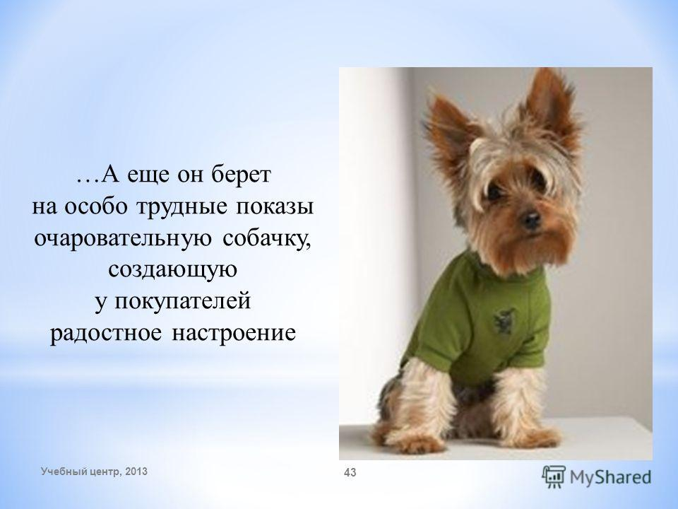 Учебный центр, 2013 43 …А еще он берет на особо трудные показы очаровательную собачку, создающую у покупателей радостное настроение