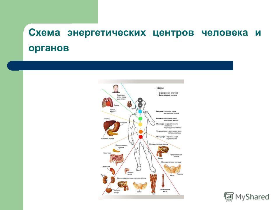 Схема энергетических центров человека и органов