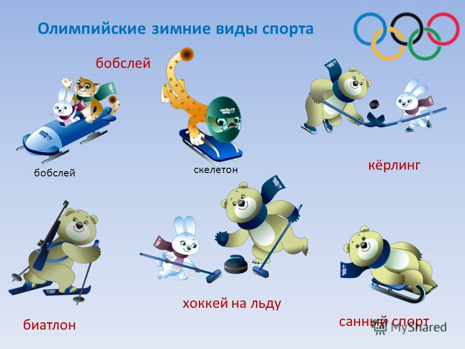 санный спорт хоккей на льду кёрлинг бобслей биатлон скелетон бобслей Олимпийские зимние виды спорта