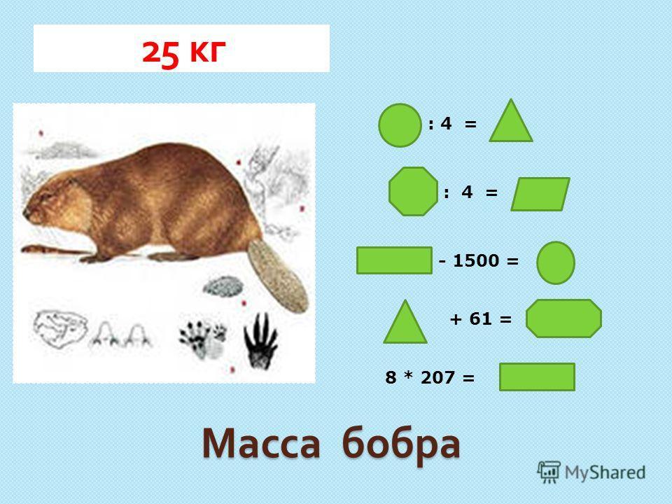 Масса бобра 25 кг : 4 = - 1500 = + 61 = 8 * 207 =