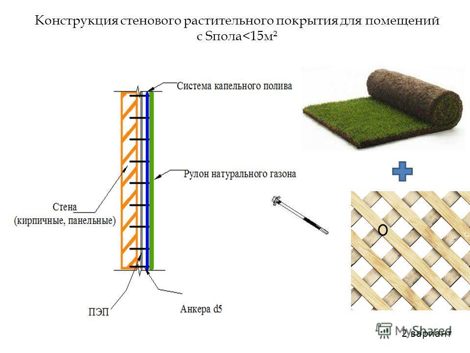 Конструкция стенового растительного покрытия для помещений с Sпола