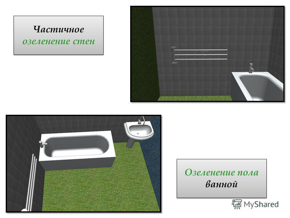 Частичное озеленение стен Озеленение пола ванной