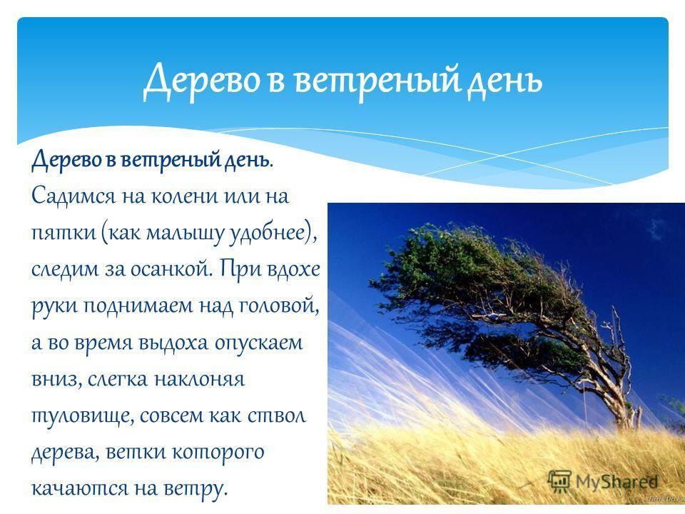 Дерево в ветреный день Дерево в ветреный день. Садимся на колени или на пятки (как малышу удобнее), следим за осанкой. При вдохе руки поднимаем над головой, а во время выдоха опускаем вниз, слегка наклоняя туловище, совсем как ствол дерева, ветки кот