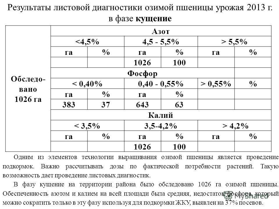 Результаты листовой диагностики озимой пшеницы урожая 2013 г. в фазе кущение Обследо- вано 1026 га Азот  5,5% га% % % 1026100 Фосфор < 0,40%0,40 - 0,55%> 0,55% га% % 3833764363 Калий < 3,5%3,5-4,2% > 4,2% га% % % 1026100 Одним из элементов технологии