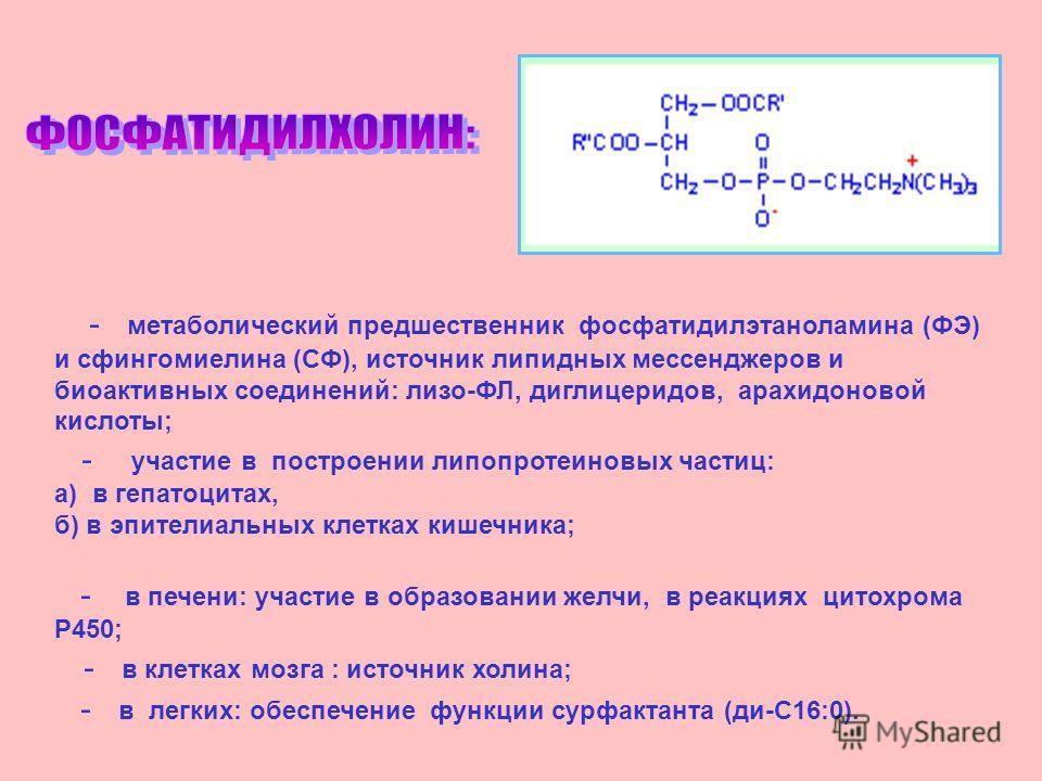 - метаболический предшественник фосфатидилэтаноламина (ФЭ) и свингомиелина (СФ), источник липидных мессенджеров и биоактивных соединений: лиза-ФЛ, диглицеридов, арахидоновой кислоты; - участие в построении липопротеиновых частиц: а) в гепатоцитах, б)