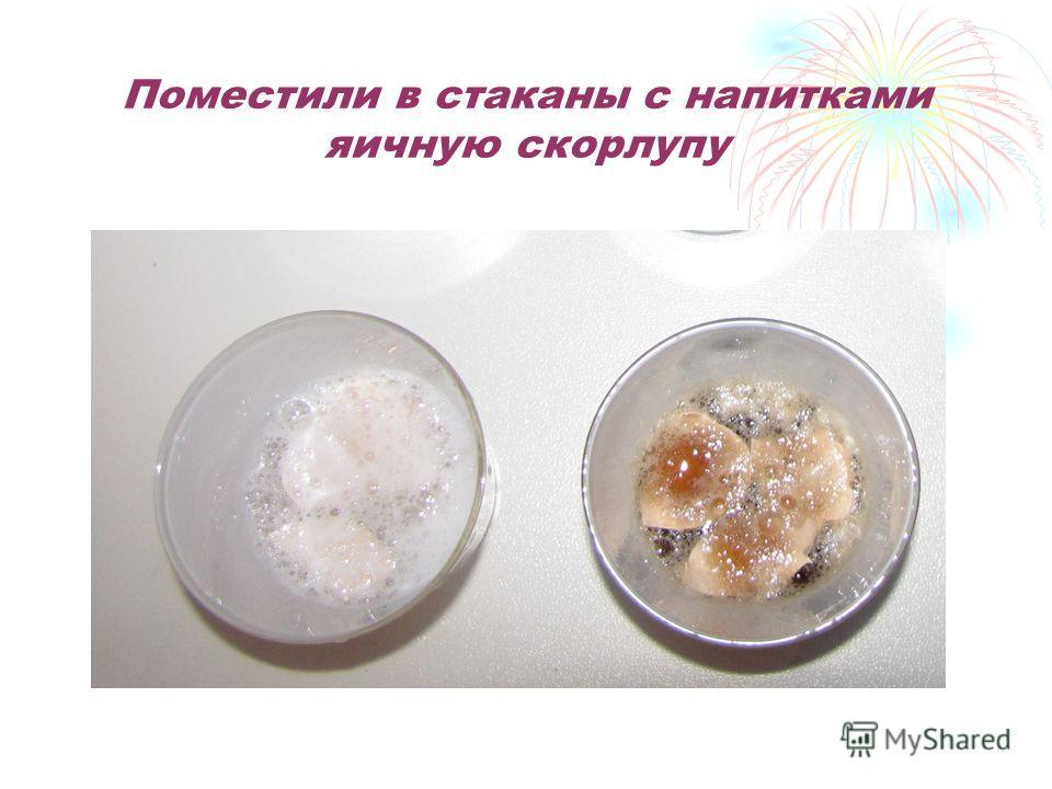 Поместили в стаканы с на питками яичную скорлупу