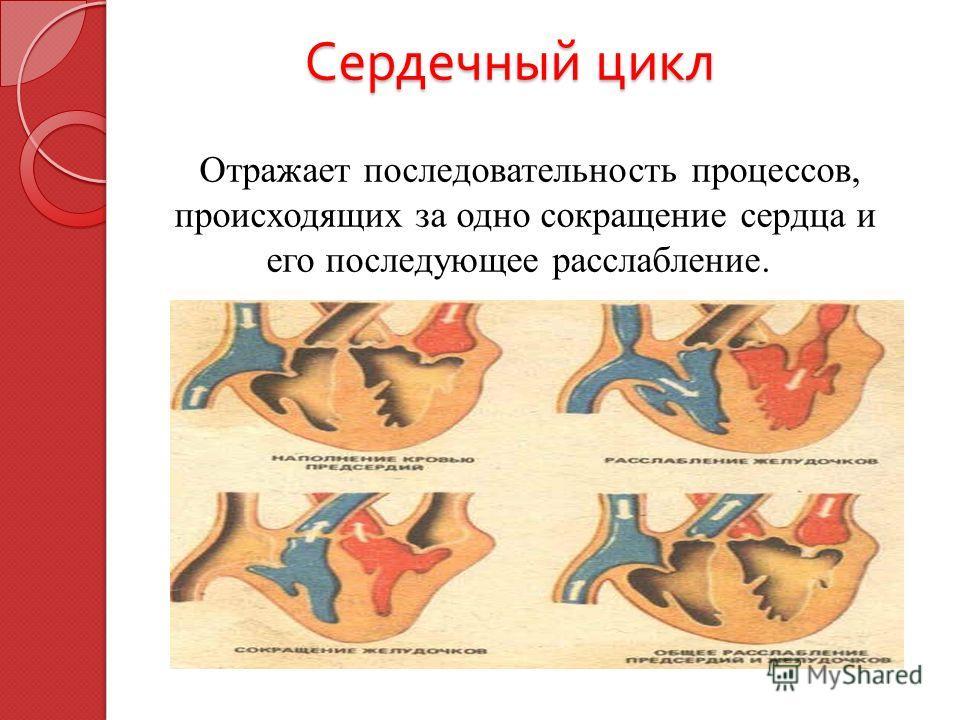 Сердечный цикл Сердечный цикл Отражает последовательность процессов, происходящих за одно сокращение сердца и его последующее расслабление.