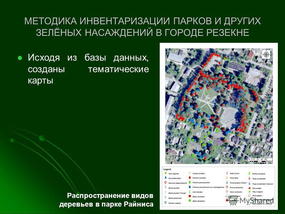 МЕТОДИКА ИНВЕНТАРИЗАЦИИ ПАРКОВ И ДРУГИХ ЗЕЛЁНЫХ НАСАЖДЕНИЙ В ГОРОДЕ РЕЗЕКНЕ Исходя из базы данных, созданы тематические карты Распространение видов деревьев в парке Райниса