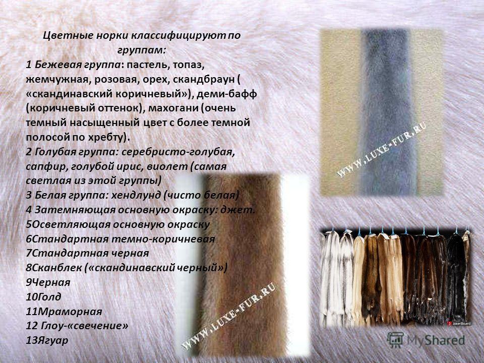 Цветные норки классифицируют по группам: 1 Бежевая группа: пастель, топаз, жемчужная, розовая, орех, скандбраун ( «скандинавский коричневый»), деми-бафф (коричневый оттенок), махагони (очень темный насыщенный цвет с более темной полосой по хребту). 2