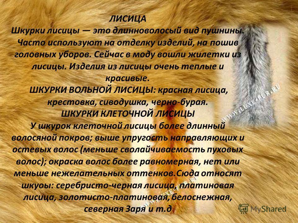ЛИСИЦА Шкурки лисицы это длинноволосый вид пушнины. Часто используют на отделку изделий, на пошив головных уборов. Сейчас в моду вошли жилетки из лисицы. Изделия из лисицы очень теплые и красивые. ШКУРКИ ВОЛЬНОЙ ЛИСИЦЫ: красная лисица, крестовка, сив