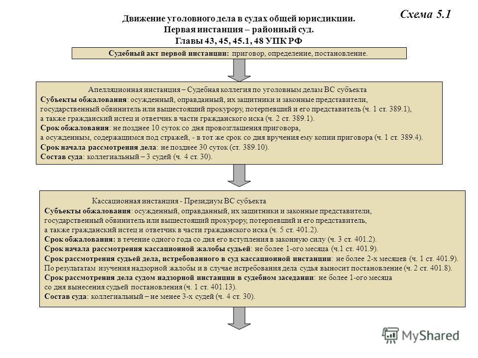 УПК РФ Схема 5.1 Судебный