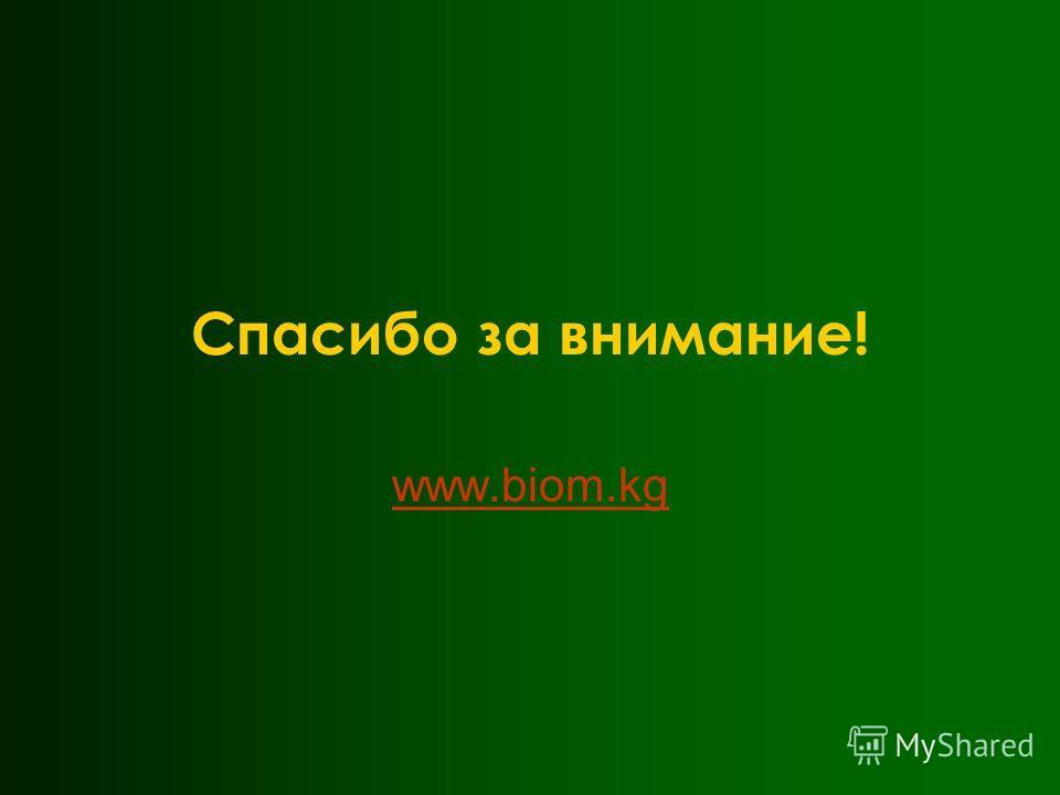 Спасибо за внимание! www.biom.kg