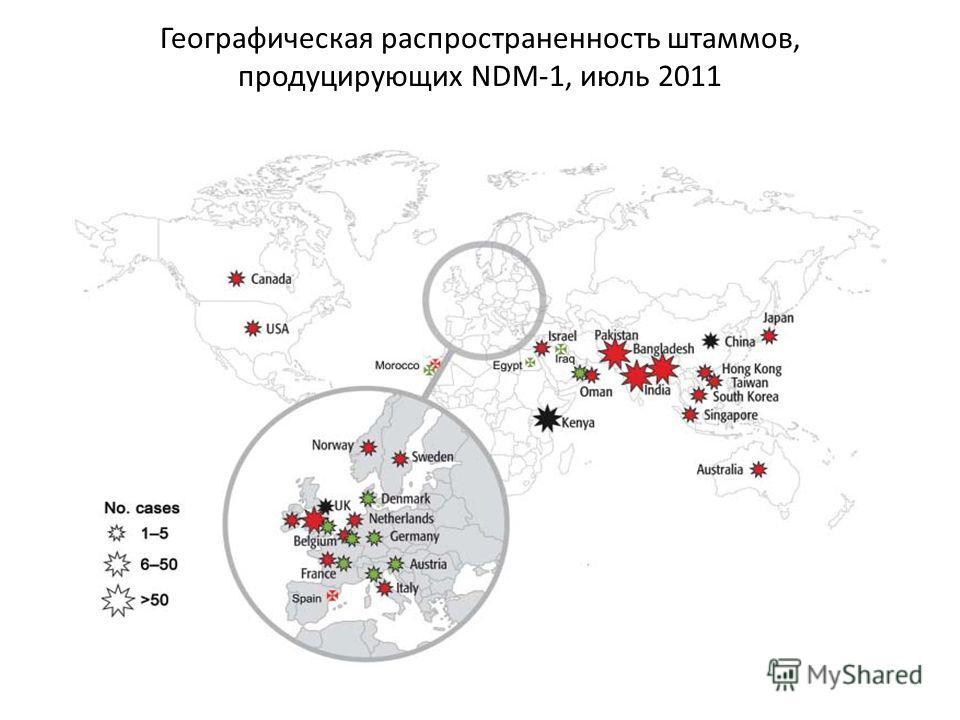 Географическая распространенность штаммов, продуцирующих NDM-1, июль 2011