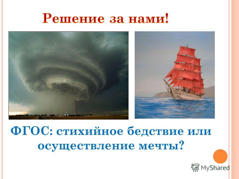 ФГОС: стихийное бедствие или осуществление мечты?