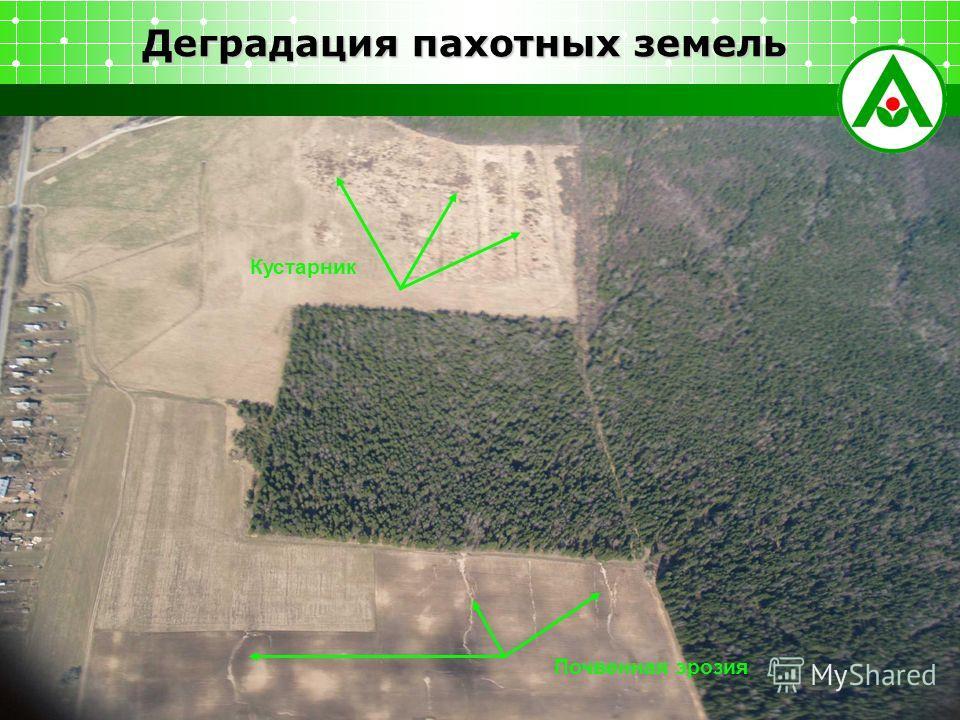 Деградация пахотных земель Кустарник Почвенная эрозия