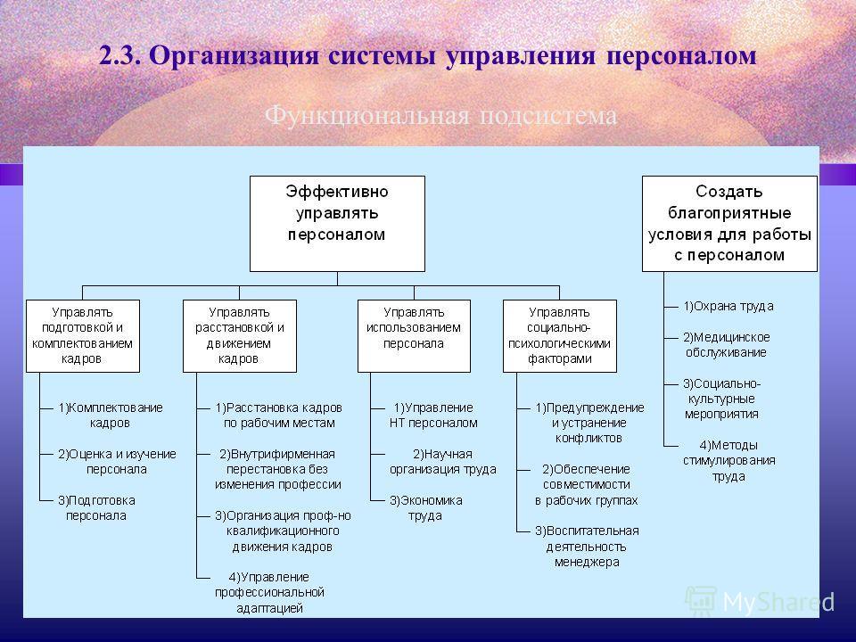 2.3. Организация системы управления персоналом Функциональная подсистема